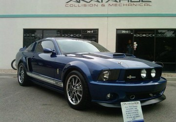 Shelby Mustang Body Work & Paint